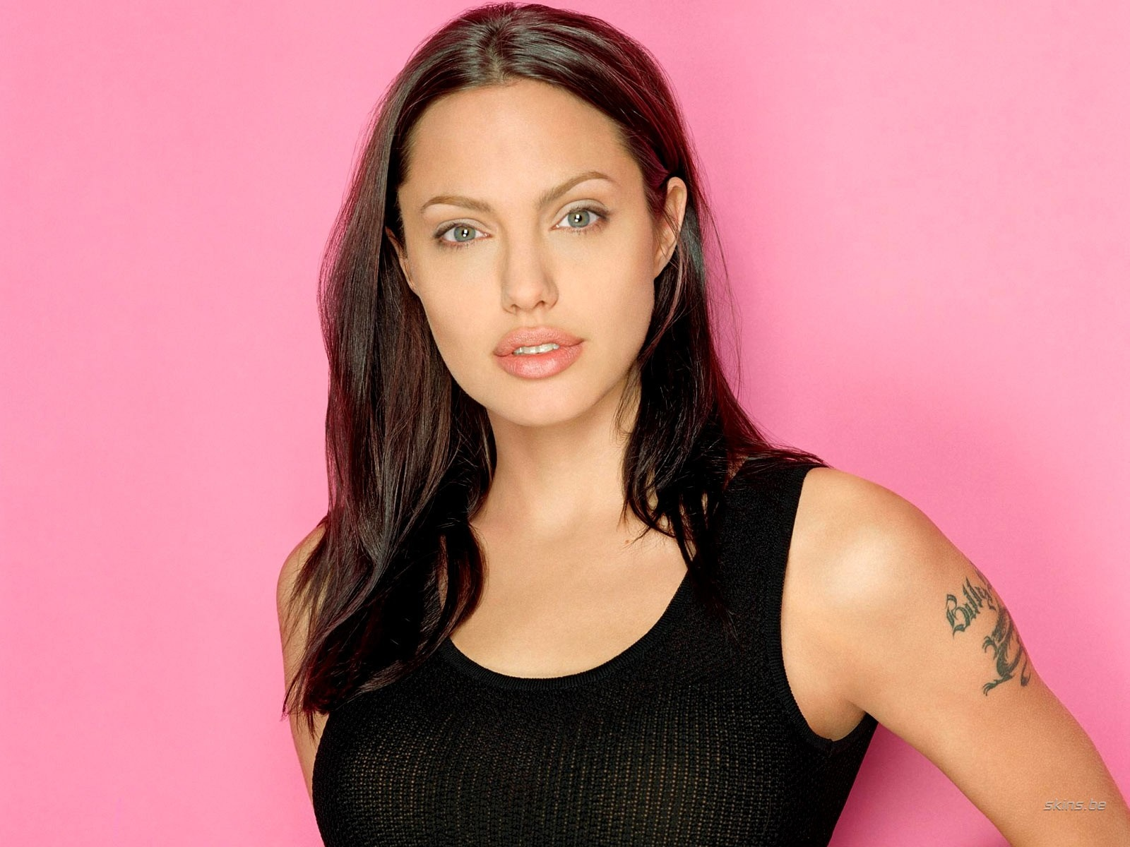 Angelina jolie in lara croft tomb raider the cradle of life 2005 - 1 6