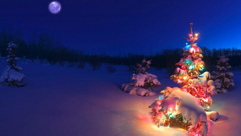 navidad-fondos-16