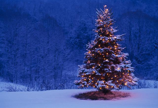 tarjetas-navidad-fotos-reales