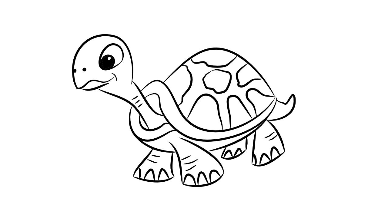 Dibujos Para Colorear: Dibujos De Tortugas Para Colorear E Imprimir