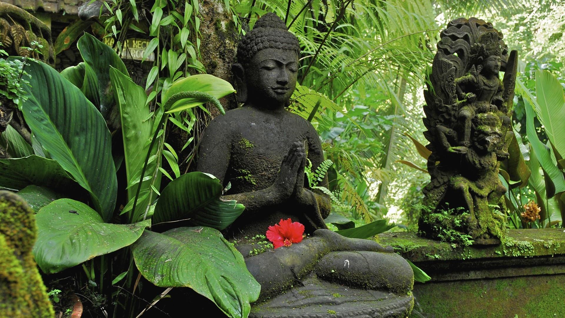 Fondos De Pantalla De Buda Y El Budismo  Wallpapers Hd Gratis