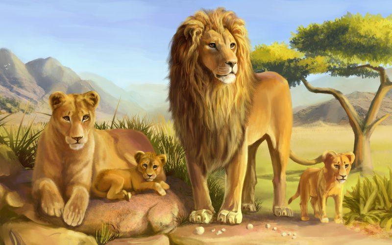 leones-wallpapers-5