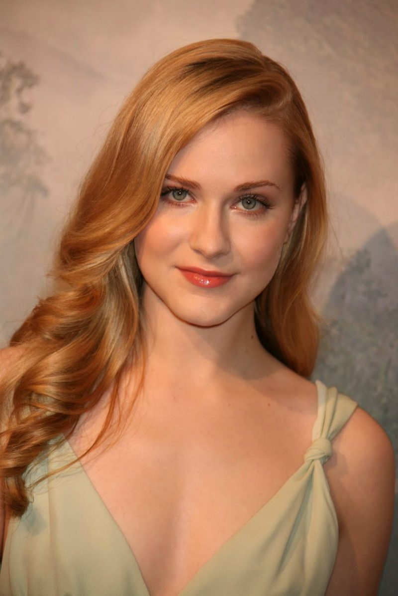 Evan Rachel Wood nudes (59 pics), leaked Sideboobs, Instagram, braless 2016