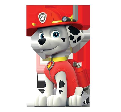 Dalmata bombero de La Patrulla Canina