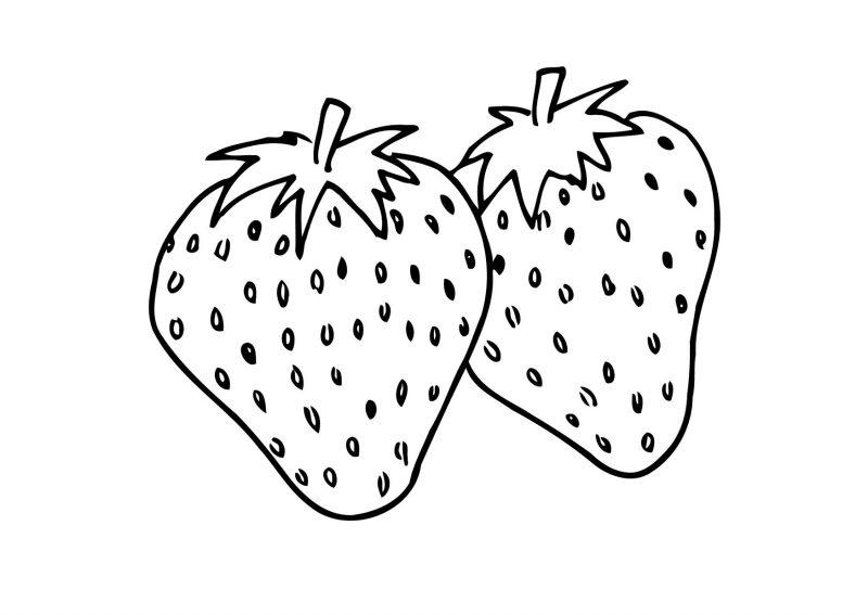 Dibujos De Ciervos Para Colorear E Imprimir: Dibujos Para Colorear De Frutas, Imprimir Y Pintar