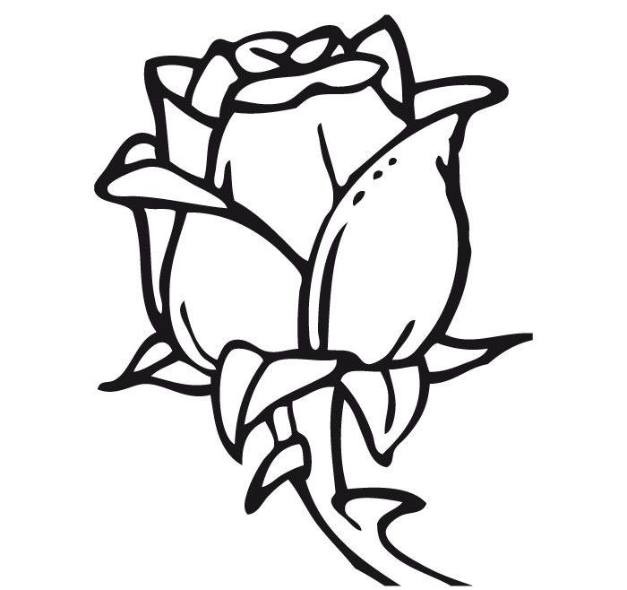 Dibujos de rosas para colorear, pintar e imprimir