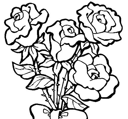 Dibujos De Rosas Para Colorear Pintar E Imprimir