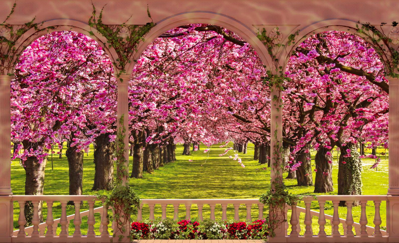 fondos de pantalla de primavera wallpapers hd