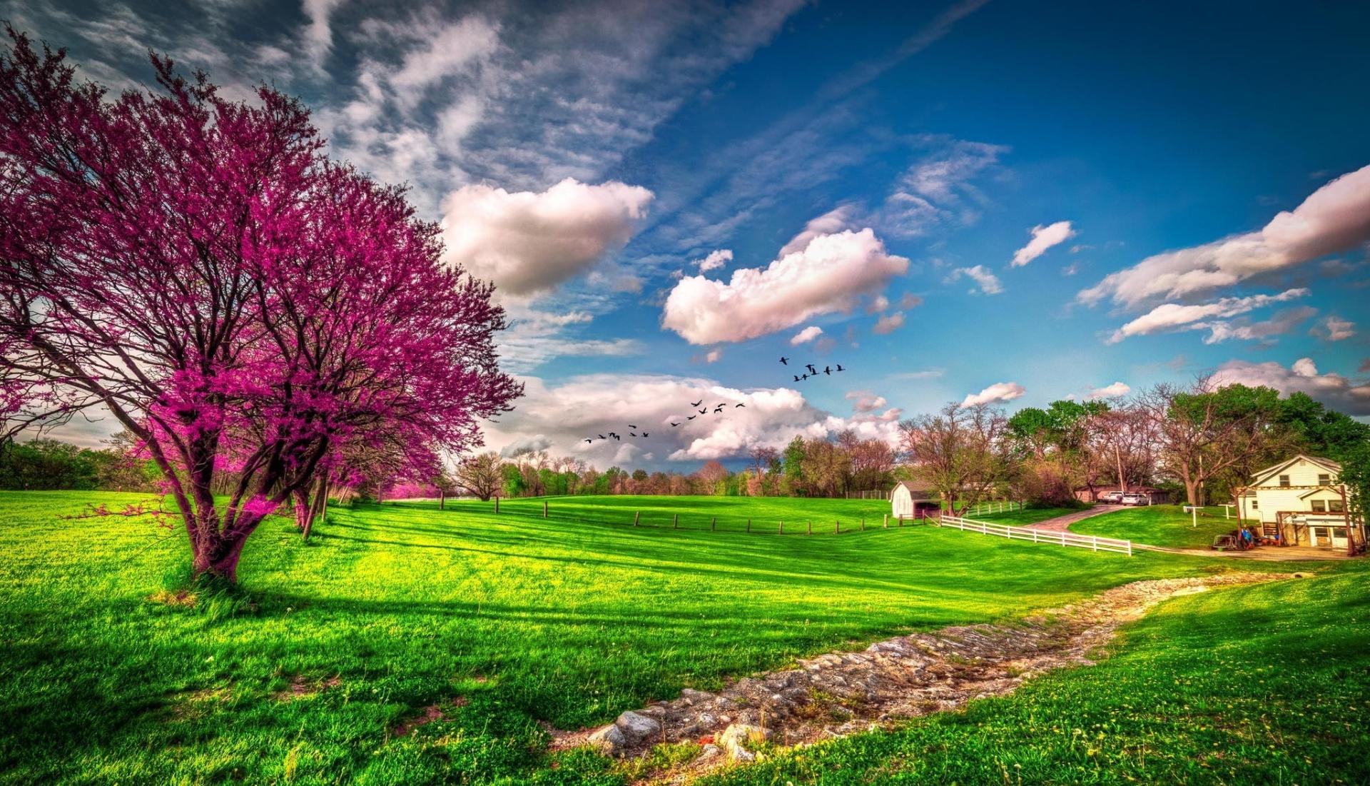 Fondos de pantalla de primavera wallpapers hd for Ver fondos de pantalla