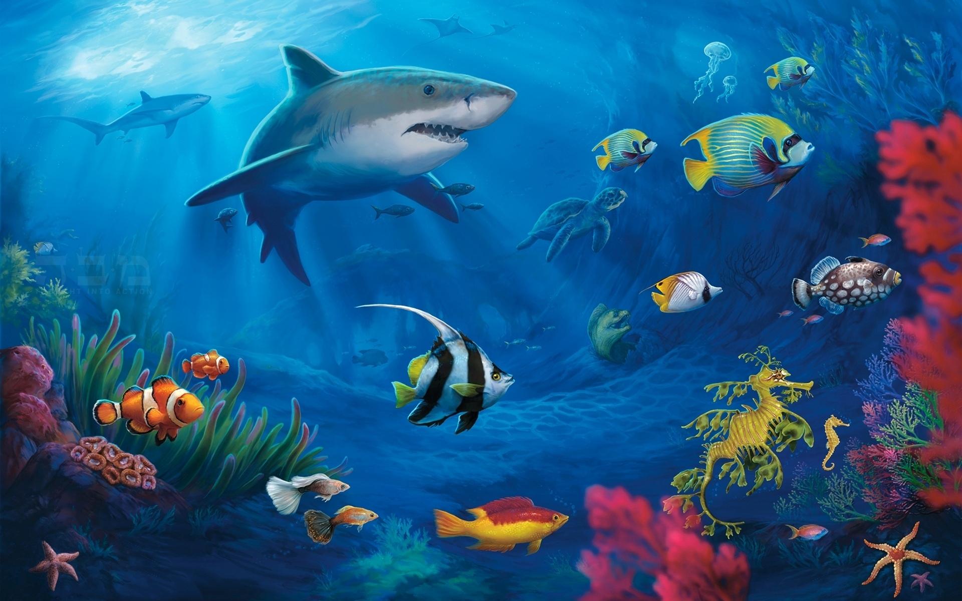 Tiburon fondos de pantalla de tiburones wallpapers hd gratis for Fondos de pantalla para tablet hd