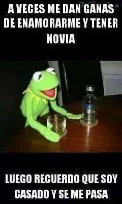 """Memes de la Rana René con frases """"a veces"""" en imágenes"""