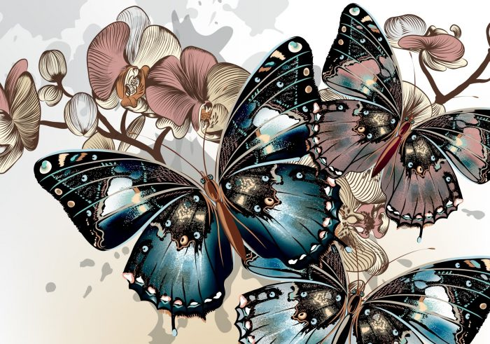 Mariposas Wallpapers