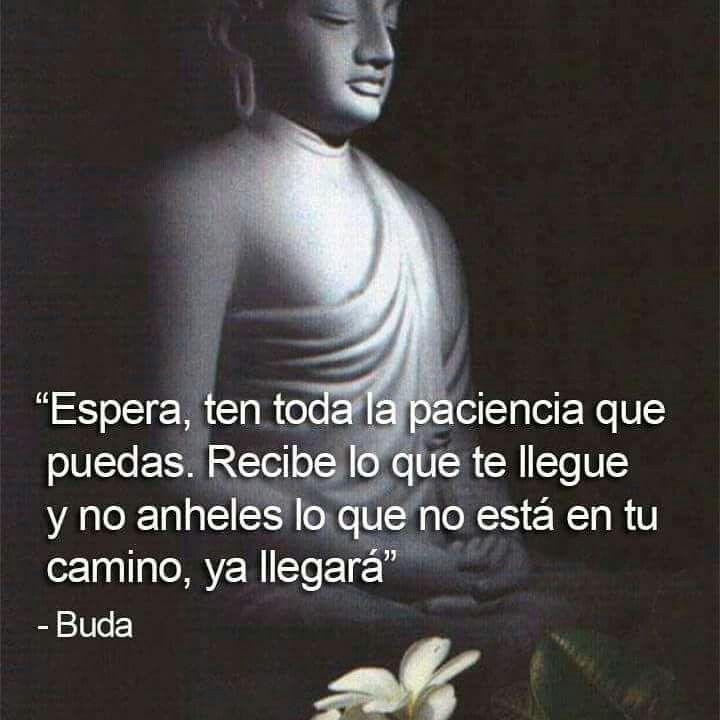 Imágenes Con Frases Sabias De Buda Para Reflexionar Y