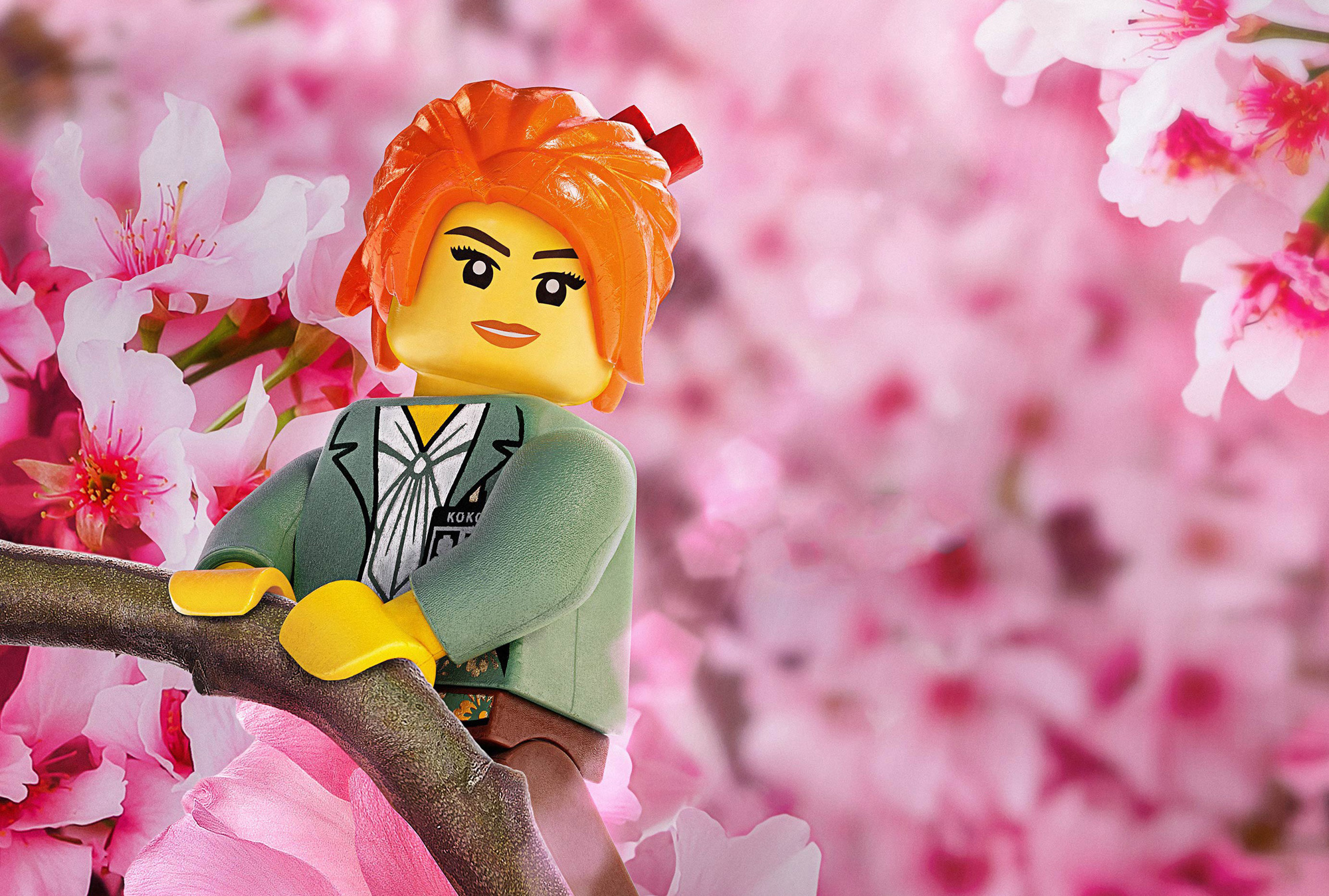 Fondos De Pantalla De Quikis: Fondos De Pantalla La Lego Ninjago, Wallpapers HD