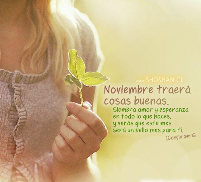 Imágenes de Bienvenido Noviembre con frases bonitas