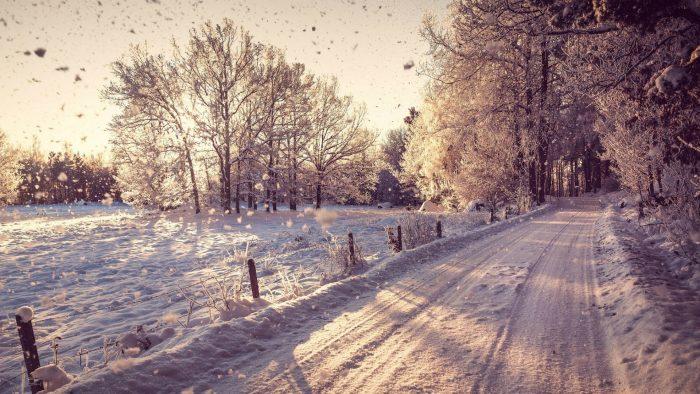Fondos de pantalla Invernales