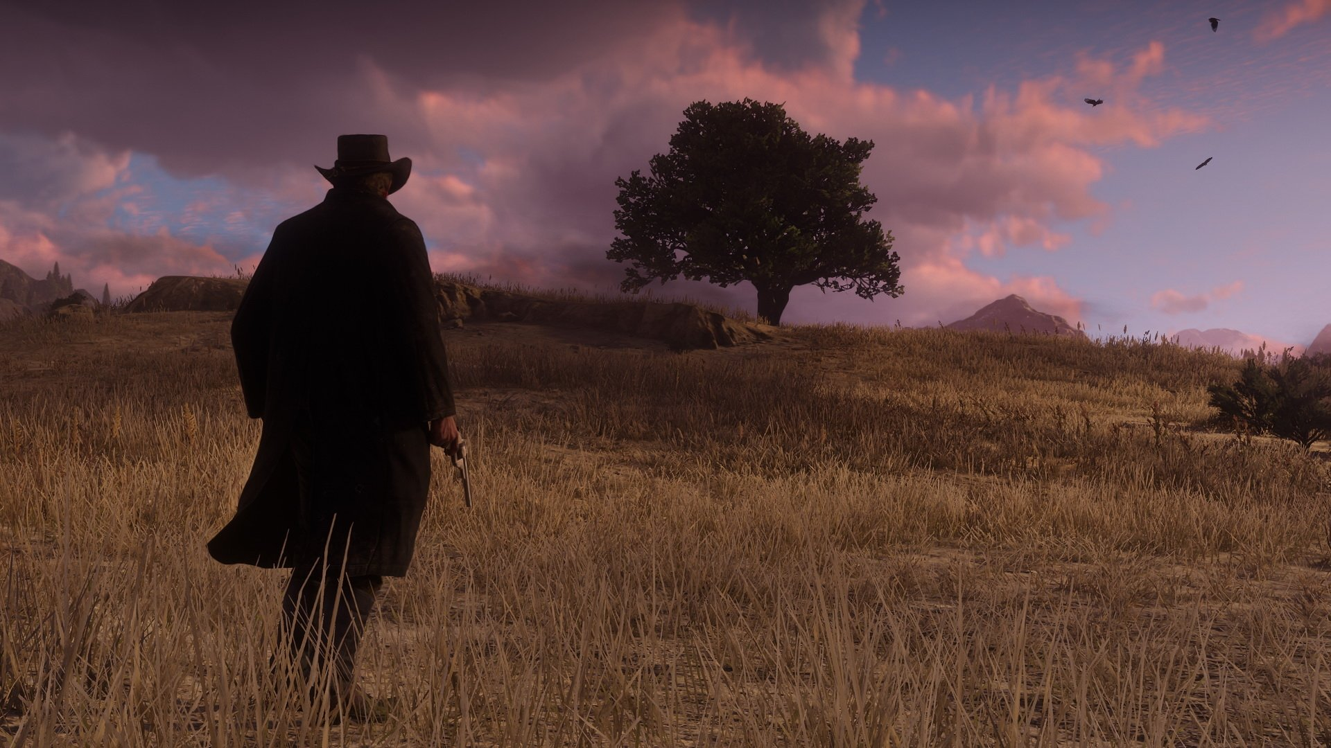 Ipad Retina Hd Wallpaper Rockstar Games: Imágenes Y Fondos De Red Dead Redemption 2, Wallpapers Gratis